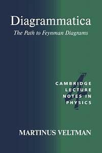 Diagrammatica  The Path To Feynman Diagrams