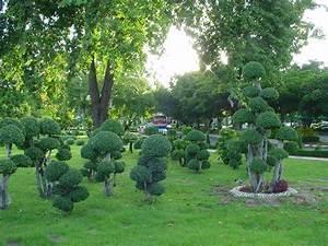 Bäume Für Steingarten : japanischer garten baumgestaltung in thailand ~ Sanjose-hotels-ca.com Haus und Dekorationen