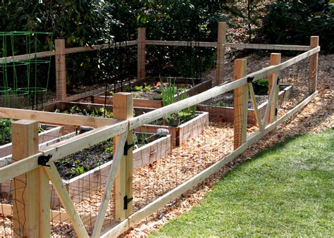 garden fencing ideas a simple garden fence tilly s nest