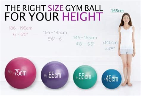 What Size Gym Ball Should I Use Glass Sliding Door Curtains Tan And White Chevron Shower Curtain Installing Rod For Green Room Curved Tension Mount Magnetic Rods Steel Doors Bedroom Sheer With Hooks