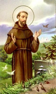 san francisco de asis el patrono del ambiente  de los