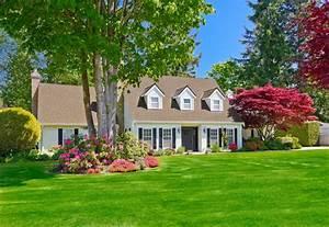 house house design turf flower bush tree lawn grass green ...