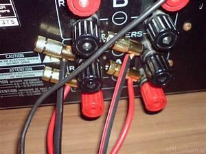 Boxen Ohne Kabel : bananenstecker lautsprecher bananenstecker kabel an gle 490 2 bananenstecker gle verkabelung ~ Eleganceandgraceweddings.com Haus und Dekorationen