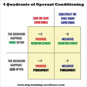 Operant Conditioning Positive Reinforcement