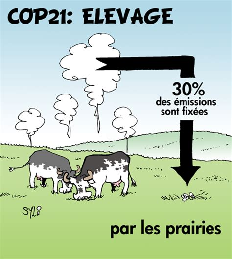 chambre d agriculture marne syl arts cop21 elevage les prairies puits de carbone