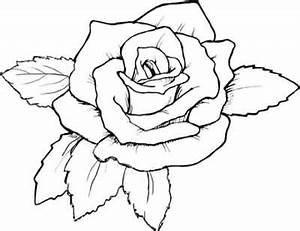 More Roses Coloring Pages