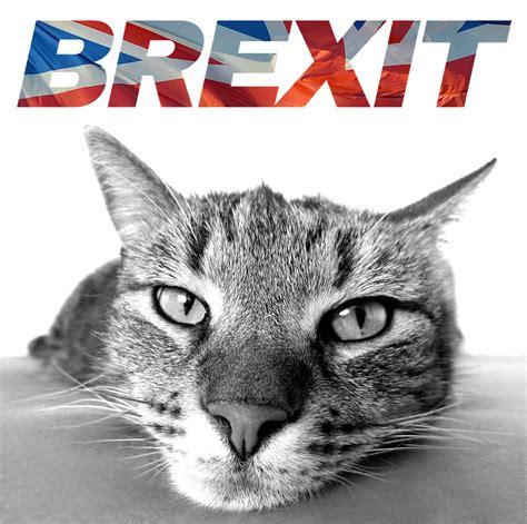 gatto brexit ministro francese nathalie loiseau