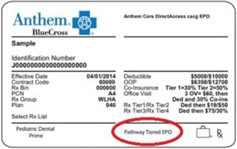 bcbs federal provider phone number new anthem blue cross epo member cards