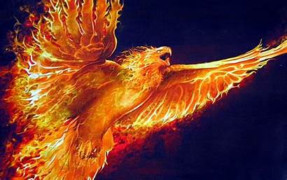 Phoenix Cool Background