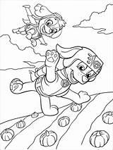Zuma Patrol Paw Coloring Mycoloring Printable sketch template