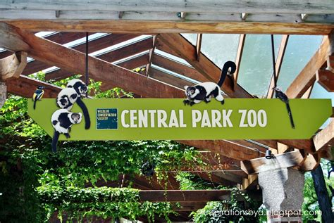 Inspirations by D: Central Park Zoo in New York