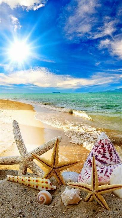 Waves Tropical Screensavers Beach Summer Sun Starfish
