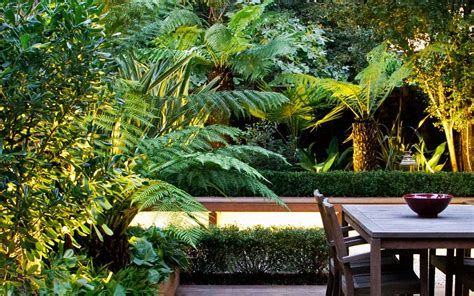 tropical style gardens tropical garden designs modern exotic outdoor space london