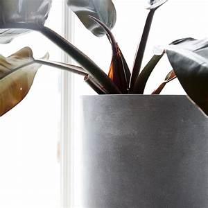 Blumentöpfe Groß Draußen : house doctor blumentopf beton gross toll f r drinnen und draussen villa madelief ~ Eleganceandgraceweddings.com Haus und Dekorationen