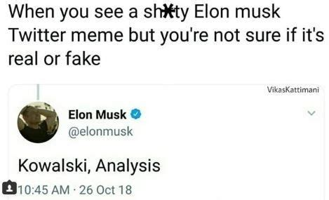 Elon Musk Twitter Meme / Elon Musk Is Currently Embroiled ...