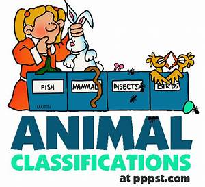 Free PowerPoint Presentations about Animal Classifications ...