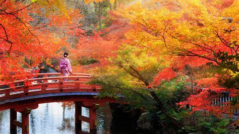 guia turistica de japon