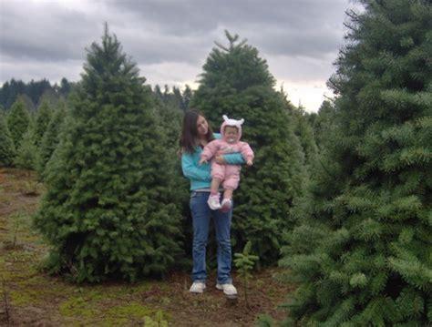 estacada oregon christmas tree capital of the world