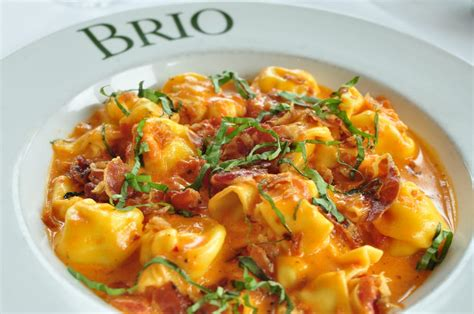 cuisine brio brio tuscan grille order food 1896 photos 966 reviews tuscan 774 spectrum ctr