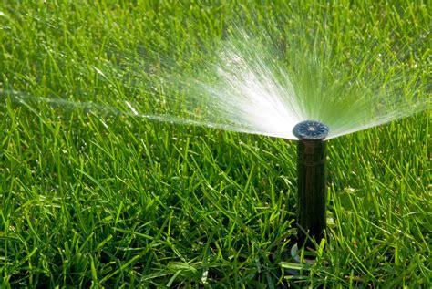 landscaping sprinklers irrigation 171 locally grown landscape