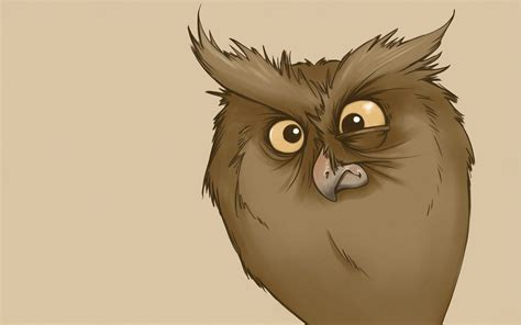 Funny Look Owl Minimalism Owl Cartoon Bird
