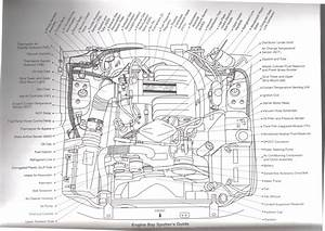 1990 Mustang 50 Wiring Diagram