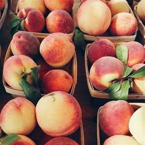 Aesthetic Fruit Indie Peach Peaches Image 3583498