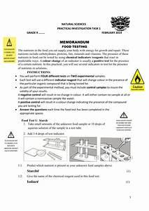 Grade 9 Natural Science Practical 2 2014 Anon6