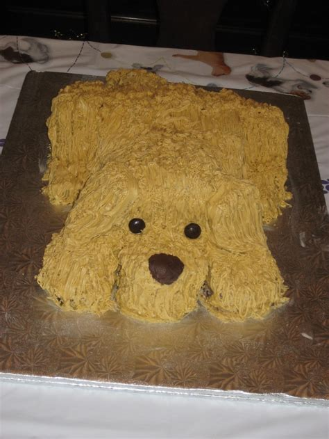 dog  puppy cake      labrador yellow