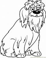 Coloring Puppies Pound Pages English Sheepdog Chris Jingles Printable Getcolorings Coloringpages101 Getdrawings sketch template