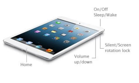 apple  ipad mini tablet  price review
