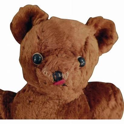 Teddy Bear Brown Eyes Button Cinnamon Shoe