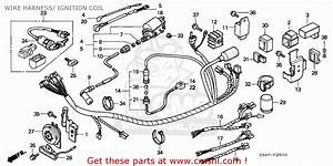 Honda C50 Cub 1993  P  Greece    Csw Mph Wire Harness