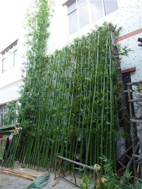 real trunk bamboo artificial bamboo tree  outdoor wall