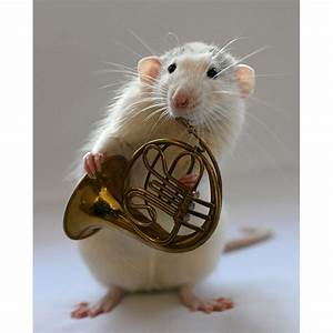 A mouse Playing the French Horn by NanicaFairyBeliver on ...