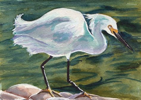 Snowy Egret Watercolor Painting