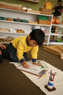 lone tree preschool montessori at lone tree preschool education since 1985 715