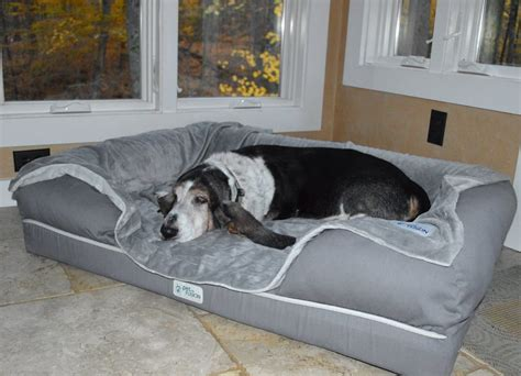 7 Of The Best Dog Beds For Large Dogs
