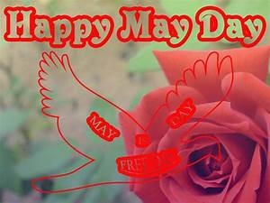 HAPPY MAY DAY! | AnandTech Forums: Technology, Hardware ...