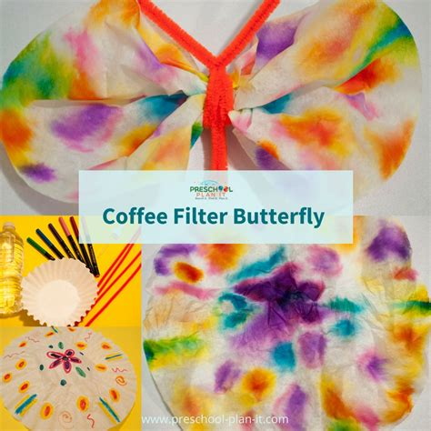 caterpillars and butterflies preschool theme 519 | caterpillars and butterflies coffee filter butterfly