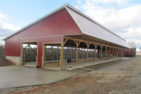 Steer Barn by Agricultural And Pole Buildings By Martin S Construction
