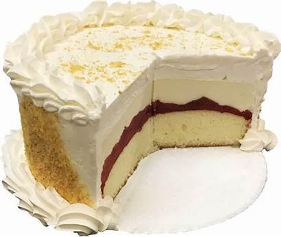 Yogurt Frozen Cakes Julie Cake Filling Cheesecake