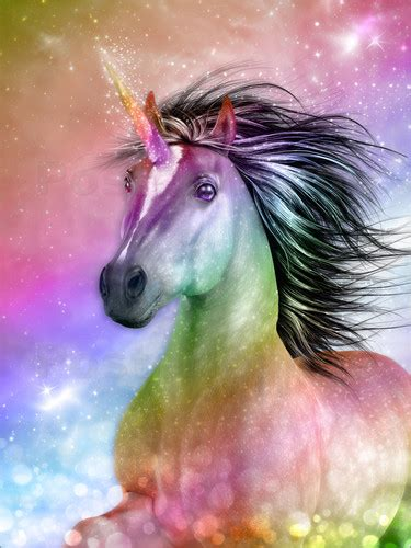 dolphins dreamdesign unicorn  authentic poster