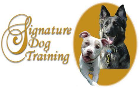 dog training services north dallas tx signature dog training