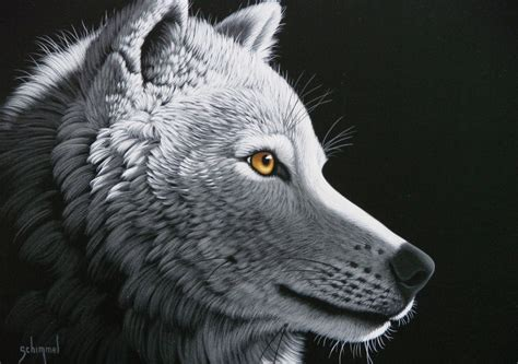 puzzle schim schimmel wolf light grafika