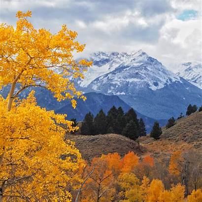 Fall Yellowstone Colors Autumn River Montana Reveling