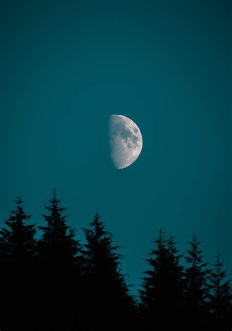 half moon iphone half moon pine iphone wallpaper idrop news 10755