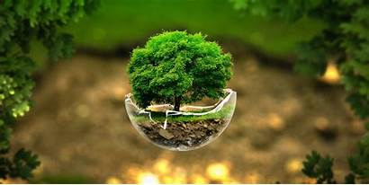 Eco Century Environment Pvt Ltd India Solutions