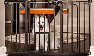 walk through pet gate groupon goods With costco dog door