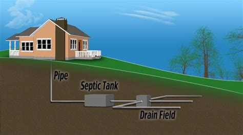 Overtime coffee grounds build up and can get packed together in if you have a septic tank you do not want to put coffee grounds down your sink unless you plan on having the tank pumped out every 6 months or so. Home Septic Care Q&A | Race Septic